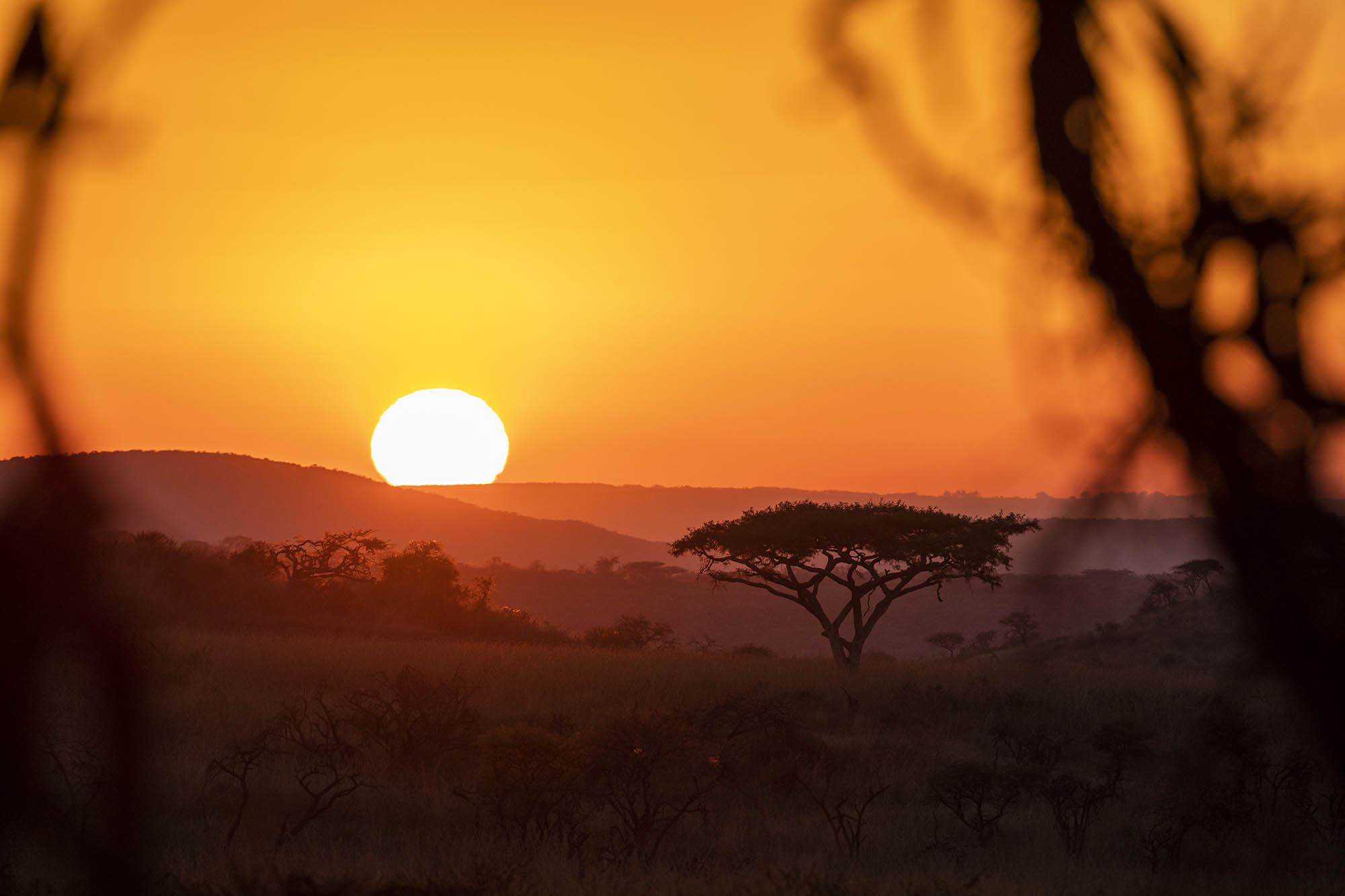 Ndaka safari lodge - Nambiti big 5 private game reserve
