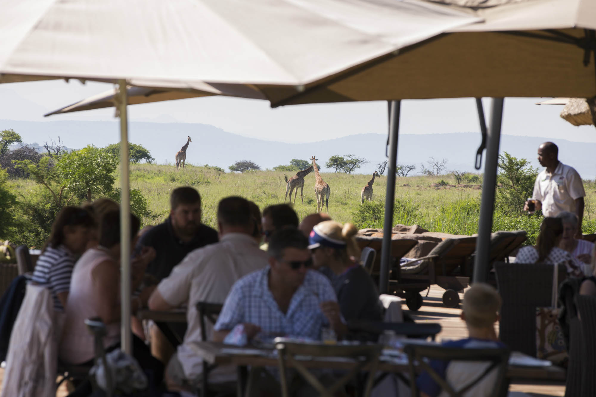 Ndaka safari lodge - lunch with a view