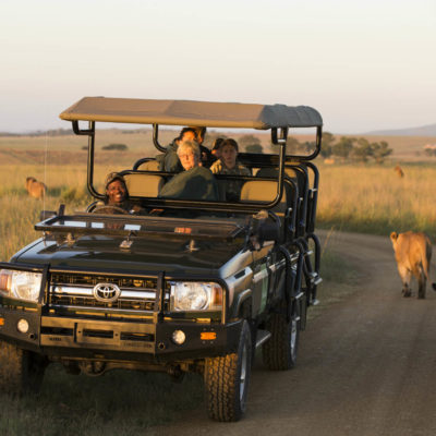 Ndaka safari lodge - lions during a game drive