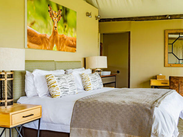 tented-room